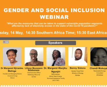 Gender and Social Inclusion (GESI) Webinar: Southern Africa