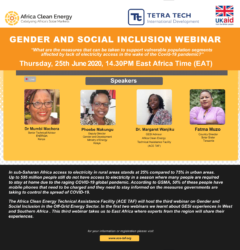 Gender and Social Inclusion (GESI) Webinar: East Africa