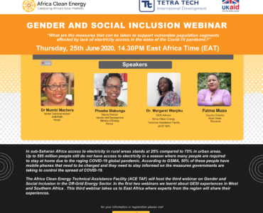 Gender and Social Inclusion (GESI) Webinar: East Africa